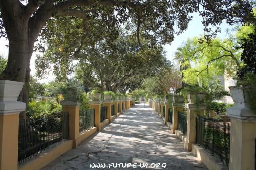Ботанический сад на Мальте